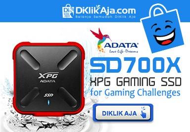 ADATA SSD SD700X